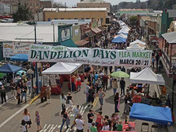 2018 Dandelion Days